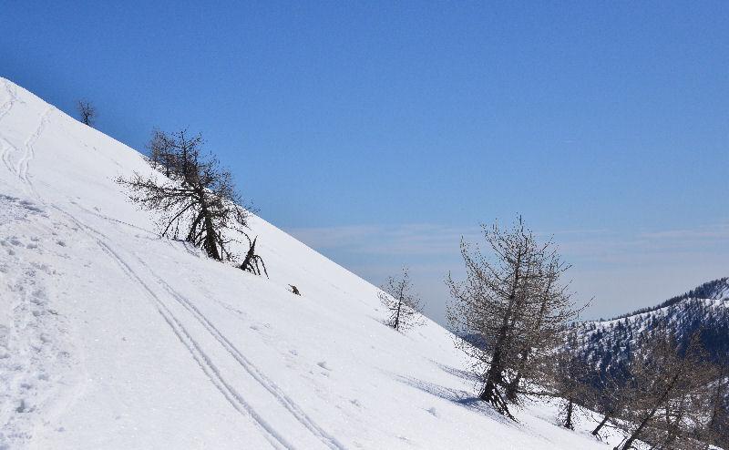 Pourtant, que la montagne est belle... 6439